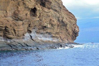 Bobby-Henline-Hawaii-2016(245)