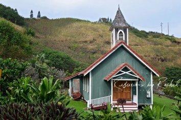 Bobby-Henline-Hawaii-2016(316)