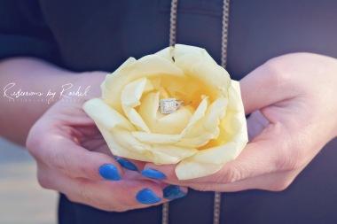 Steve-Tiffany-Engagement (49)
