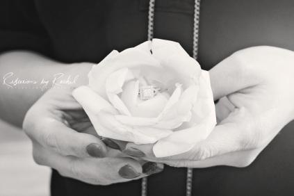 Steve-Tiffany-Engagement (50)