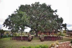 strout-wedding-logo-23